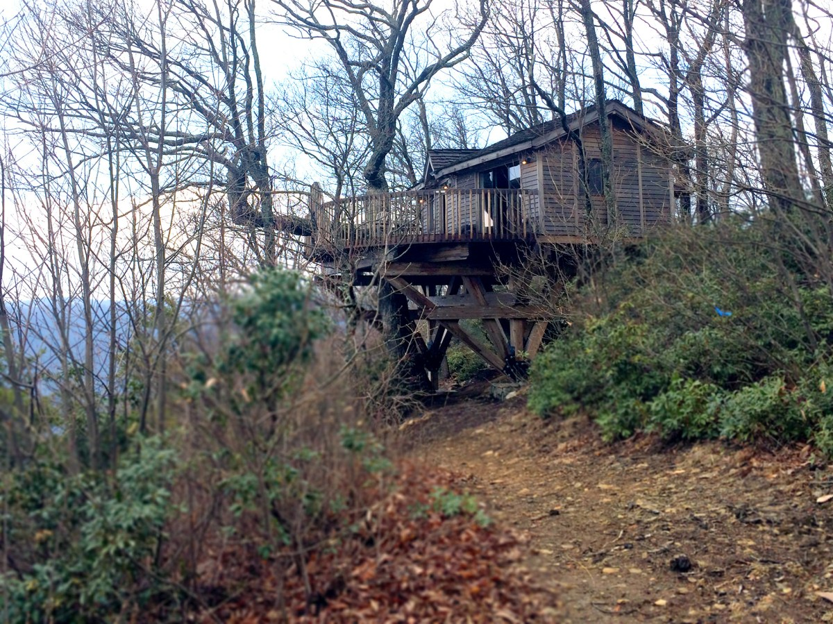Glamping Review: The Golden Eagle Tree House, Primland, Meadows of Dan, Virginia, USA